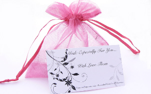 pink hen night organza gift bag